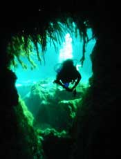 Cenote Dive Center - Cave Diving